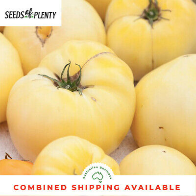 TOMATO - White Beauty (75 Seeds) Snowball TANGY FLAVOUR Bulk