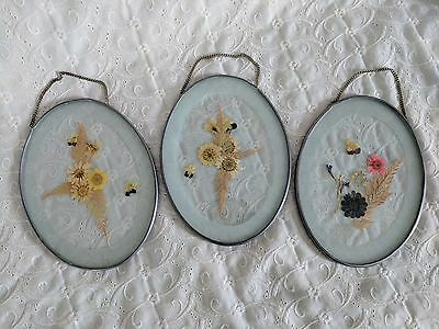 Home Wall Picture Decor - Lot of 3 Dried Flowers in Glass with Chain to Hang