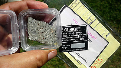 8.82 gram OURIQUE METEORITE slice with crust - 1998 Portugal fall - w/Provenance