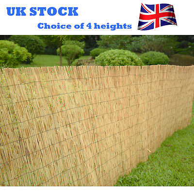 Panana Screen Fence Garden Fencing Panel 4M Natural Peeled Reed Screening Roll
