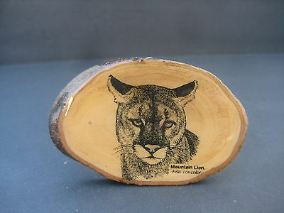 Mountain Lion Wooden Belt Buckle by Artist Felis Concolor Wood