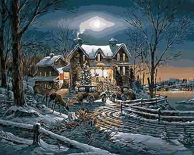 Paint By Numbers Kit 50*40cm 8080 Harvest Snow Night AU Stock
