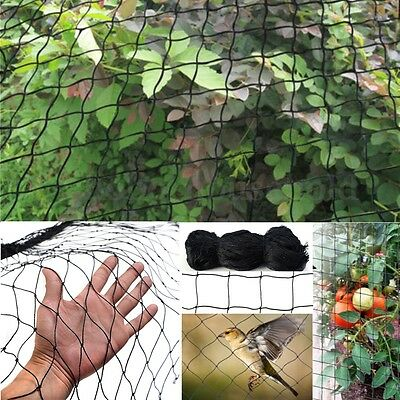 50' Bird Netting Anti Birds Poultry Avaiary Game Garden Soccer Sport Net 2*2''