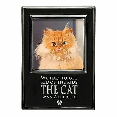 Had To Get Rid Of The Kids Photo Frame Cat Was Allergic (471293) NEW
