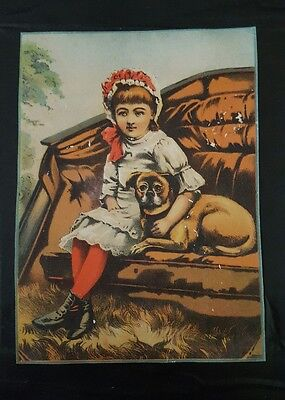 Victorian Star Soap Schultz & Co. Trade Card  Girl and Dog