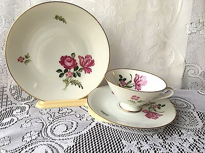 Beautiful Hutschenreuther Selb LHN Germany #32 trio Tea Cup, Saucer & Plate 620