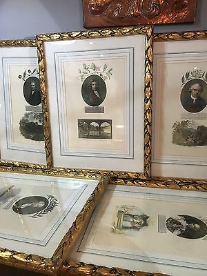 Six Antique Stipple Engravings Circa 1804 Framed And Mounted Botanical Portrait