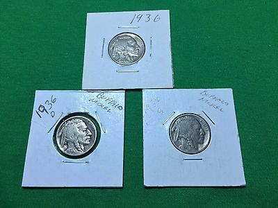 1936 P-D-S Buffalo Nickels (3)