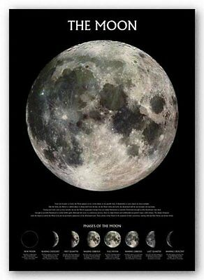 Phases of The Moon Educational Poster Print Wall Art Large Maxi