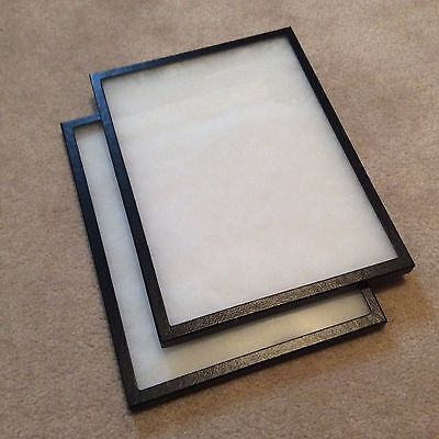 "Economy Box (of 2) 12"" x 16"" x 3/4"" Display Cases (""Riker"" type - Made in USA)"
