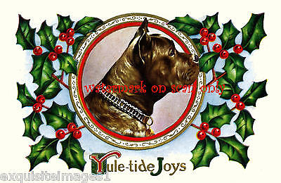 Christmas Vintage Art~Staffordshire Pit Bull Terrier Dog~Holly~NEW Lg Note Cards