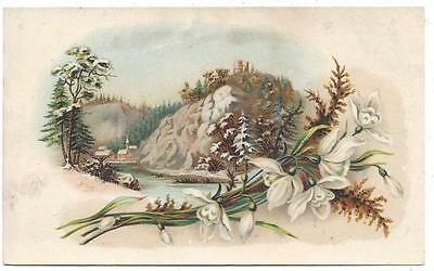Arbuckle's Ariosa Coffee - Trade Card - Mountain - Geo. S. Harpis & Sons Lith Co