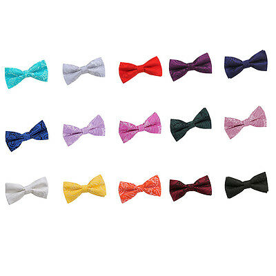 Mens Jacquard Paisley Pre-Tie Bow Sorted for Evenings Wedding Groom from DQT