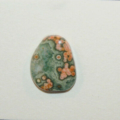 Ocean Jasper Cabochon 19.5x15mm with 4.5mm dome (12135)