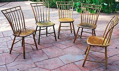 Antique birdcage Windsor side chairs set:5 bamboo turnings 1800's PA NY maple?