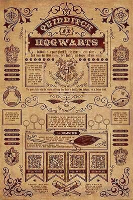 NEW * QUIDDITCH *  HARRY POTTER HOGWARTS  MAXI POSTER 62cm X 91cm ...no10