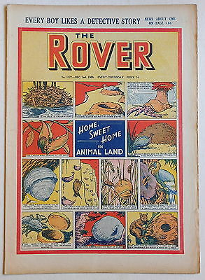 THE ROVER #1327 - 2nd December 1950