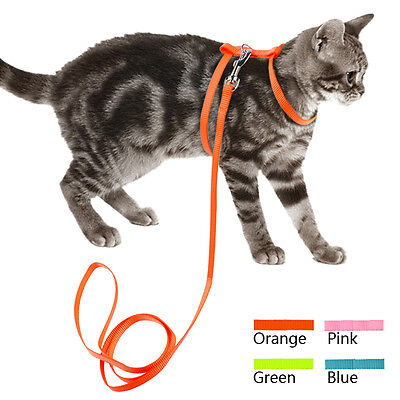 Nylon Small Dog Cat Harness and Lead Leash set Cute for Puppy Walking Chihuahua
