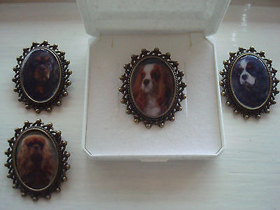 "CAVALIER KING CHARLES SPANIEL"" Brooch. Gift Boxed."