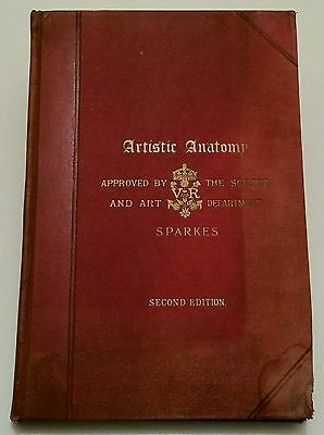 Antique Medical Book.1901.artistic Anatomy.52 Full Page Plates.prop/display.