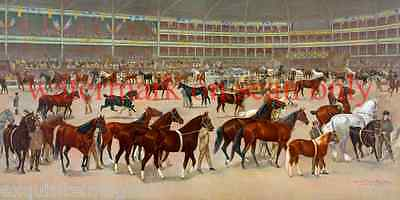 1896 National Horse Show~Parade of Winning Horses~Gorgeous~ NEW Lge Note Cards