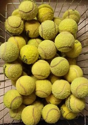 Well Used Tennis Balls For Dogs - 25 30 50 - Dog Ball / Toy  - Very Low Price !
