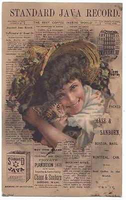 Standard Java Coffee - Trade Card - Sanborn & Chase Co., Forbes Lith, Boston, MA