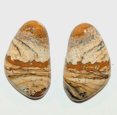 Desert Picture Jasper Cabochon 25x15mm with 5mm dome set of 2 (12157)