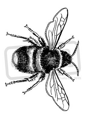 A7 'Bee' Unmounted Rubber Stamp (SP00003164)