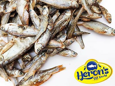HERONS Dried Fish, 3 sizes - small, medium, large TURTLE TERRAPIN CICHLID FOOD
