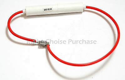 Microwave Oven  Fuse 700mA 0.7A 5kV High Voltage (Read Description)