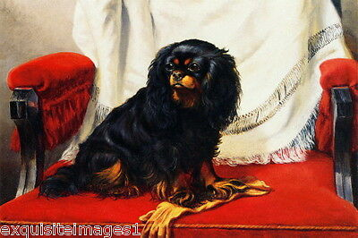 1890 Black & Tan Cavalier King Charles Spaniel Dog onRed Chair~NEW Lg Note Cards