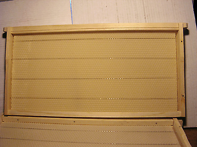 10 Complete Bee Hive Frames, Assembled Deep Frame with Wire and Wax. Beekeeping.