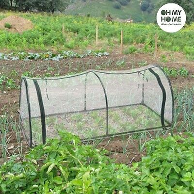 Oh My Home Tunnel Greenhouse Grow Fruit Vegetables Plants Protect & Plant Seeds