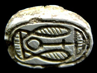 Premium quality Egyptian Steatite Scarab..