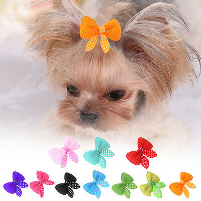 PAIR Bows Clips Hair Grooming Dog Puppy Pet Cat Fashion Present Accesories UK