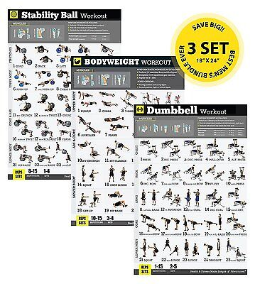 "Strength Training Workout Exercise Poster Bundle 3 Pack Free Weight 18""x24"""