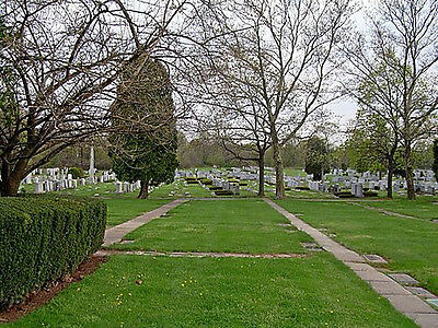 Forest Lawn - Double Depth Cemetery Graves