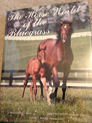 Saddlebred Vintage HORSE WORLD OF THE BLUEGRASS 1980 GEORGE FORD MORRIS (WOW)