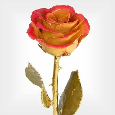 Real 11in. 24k Gold Stem Red / Ivory Rose (Free Anniversary Gift Box)