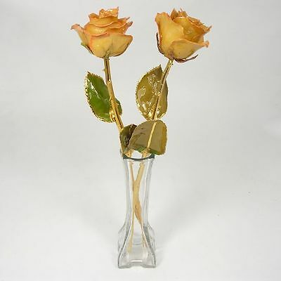 2 Gold Stem Anniversary Pink / Ivory Roses in Vase (Free Gift Box)