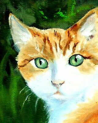 ORANGE Tabby and Lemonade   CAT FINE ART GLICEE PRINT MJ ZORAD   52