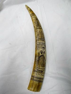 """the Bark Veronica"" Replica Walrus Tusk Scrimshaw Carving 18"" Nautical Tales"