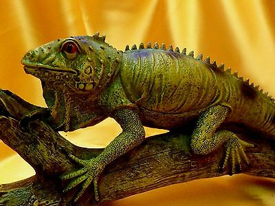 Hand Painted Life Size Iguana Sculpture With Unusually/amazing Life-Like Detail