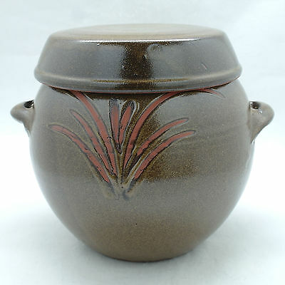 Earthenware Big Jar Korean traditional pottery Brown with lid