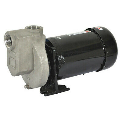 Dayton 2Zxt2 Centrifugal Pump, 1 Hp, 3 Ph, 230/460V