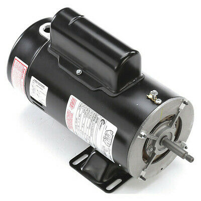 Pool and Spa Pump Motor, Century, SDS1202