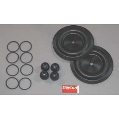 Pump Repair Kit,Fluid DAYTON 6PY60