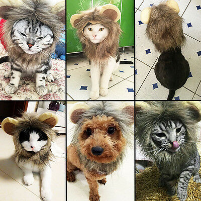 Furry Pet Hat Costume Lion Mane Wig For Cat Dress Up With Ears Party Funny Cute