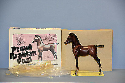 Bay Proud Arabian Foal with newly opened white picture box NAN qualified